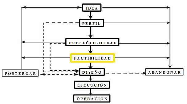 El estudio de factibilidad dentro del ciclo del proyecto