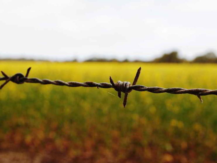 Herramientas para combatir la evasión fiscal en Argentina