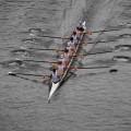 14 principios gerenciales de Edwards Deming