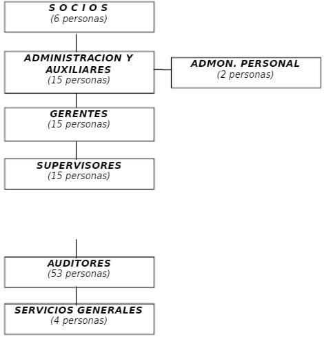 Organigrama de la Empresa de Auditoría