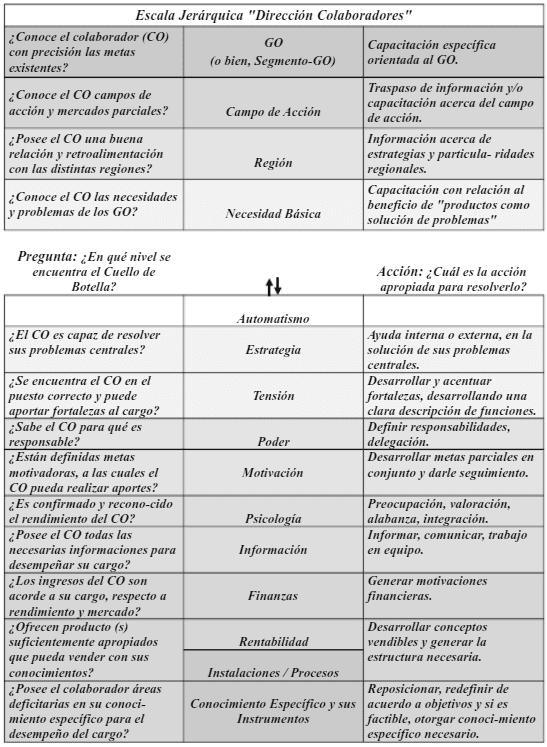 Dirección colaboradores y Escala Jerárquica