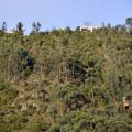 Metodología aplicada al sistema de cuentas ambientales en Bogotá