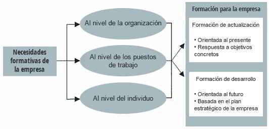 Niveles o necesidades formativas de la empresa