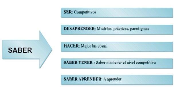 5 saberes de una Organización