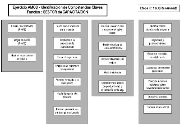 Identificación de competencias claves. Función: gestor de capacitación.