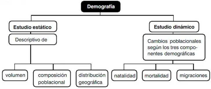 Clasificación de la demografía