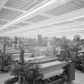 ¿Cuáles son los regímenes de producción más empleados?