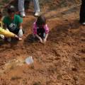 Importancia de la gestión ambiental para el futuro de nuestro planeta