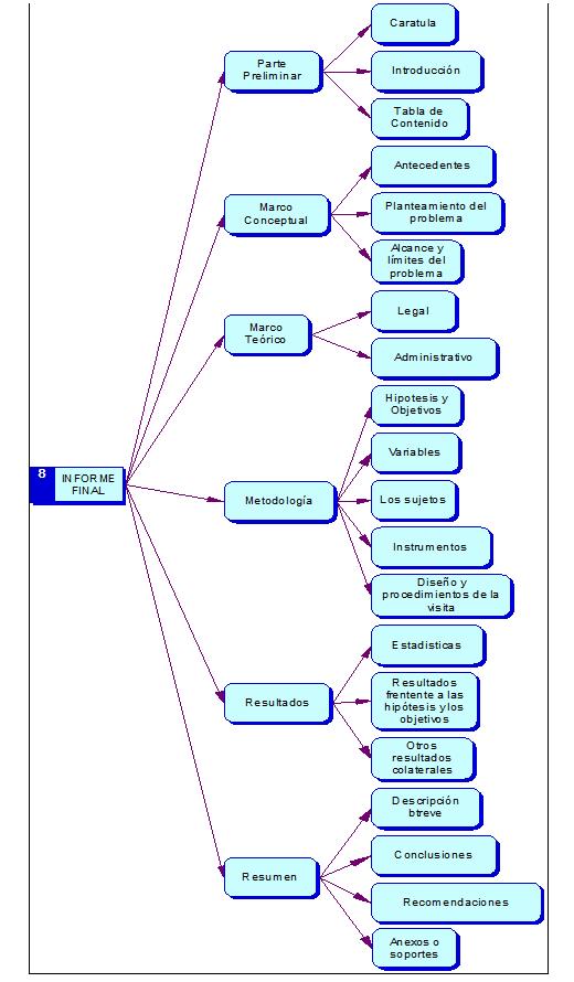 Informe de la Auditoría