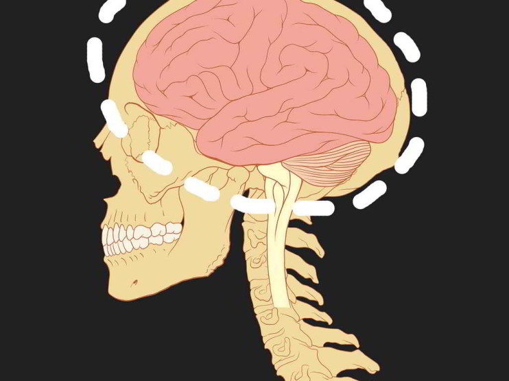 Programación neurolingüistica PNL y negociación