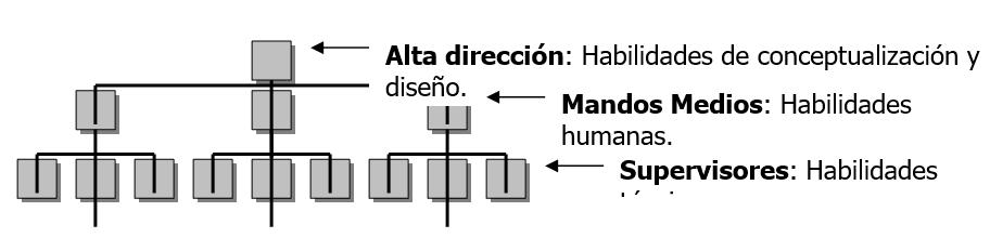 Jerarquía Organizacional