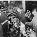 La función de control y la gestión de producción