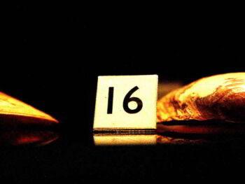 16 hábitos para mejorar el desempeño profesional en México