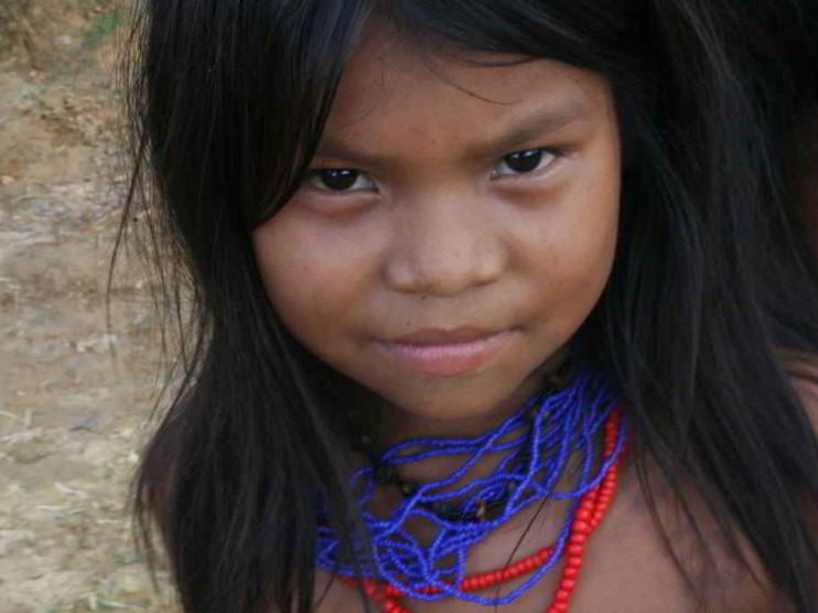 Comportamiento del consumidor en una comunidad indígena colombiana