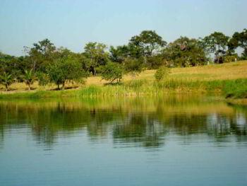 Métodos de valoración monetaria del medio ambiente