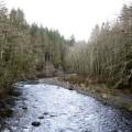 Gestão ambiental: um enfoque no desenvolvimento sustentável