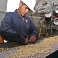 RCP Relación calidad productividad y enfoque de medición
