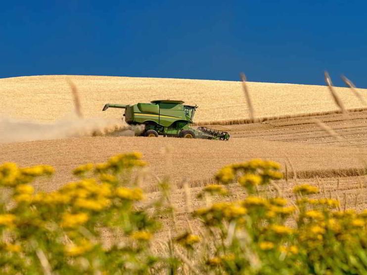 Tecnologías y sistemas de información en la producción agrícola