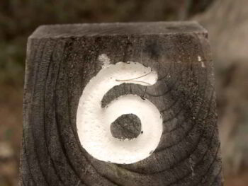 Seis Sigma, preguntas y respuestas