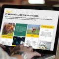 Blogs como herramienta de marketing