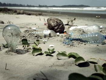 Responsabilidad civil por daños al medio ambiente