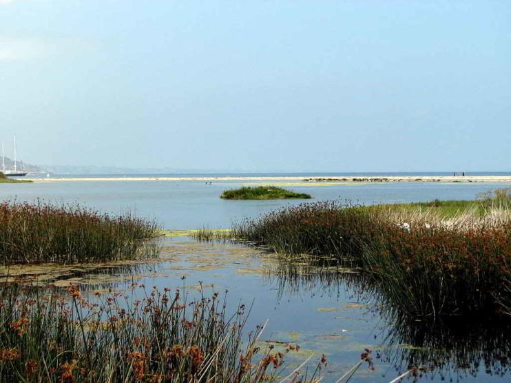 Responsabilidad administrativa ambiental