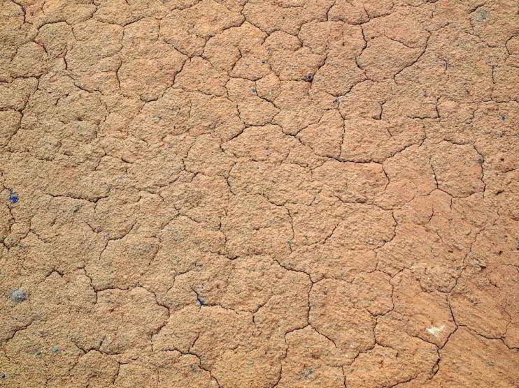 Erosión y la importancia de la conservación de suelos
