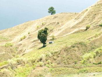Programa de educación ambiental comunitario en un parque nacional dominicano