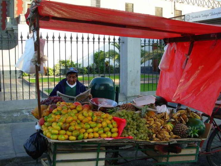 Protección social del sector informal urbano peruano