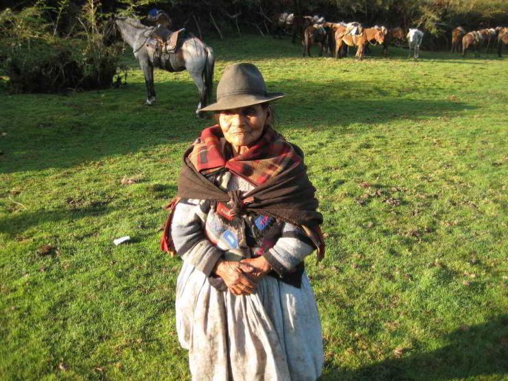 Sistema privado de pensiones en la economía peruana