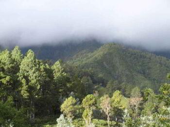 Enfoque y modelo de compensación ambiental de un parque nacional dominicano