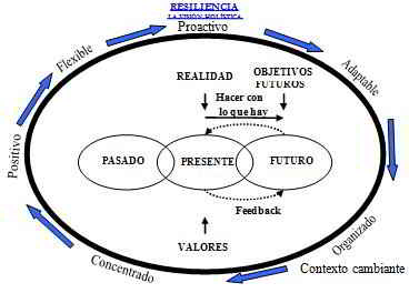 resiliencia-un-enfoque-sistemico5