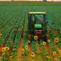 Subsidios agropecuarios en países ricos