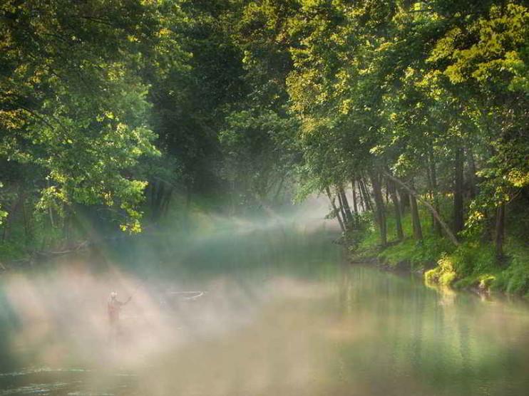 Interdisciplinariedad en derecho y educación ambiental