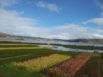 Políticas de desarrollo rural en Perú