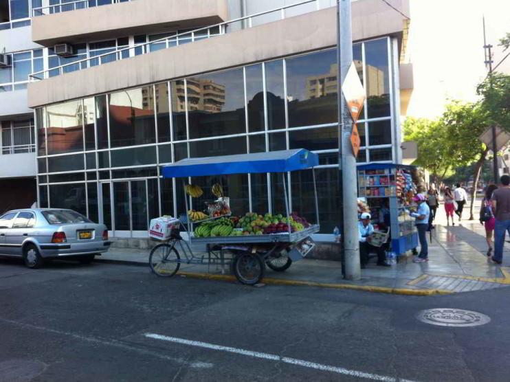 Empleo en el Perú: diagnóstico y propuestas 2006-2011