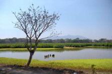 Evaluación rural participativa del Parque Nacional Montecristo
