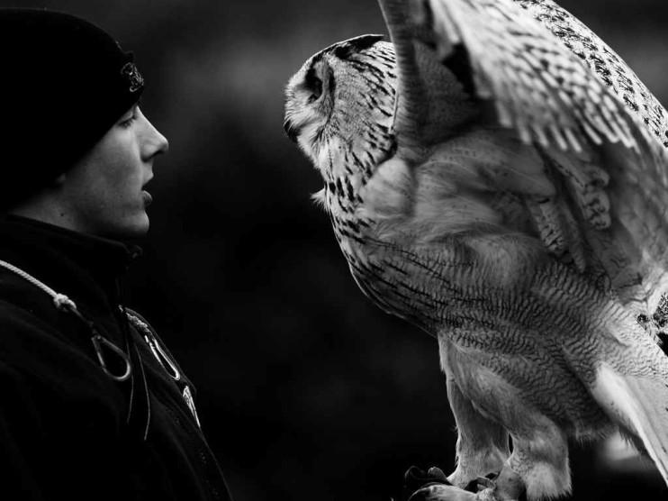 Inteligencia emocional en las relaciones con los clientes
