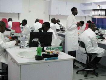El Assessment Center
