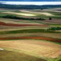 Kaizen y su aplicación en explotaciones agrícolas