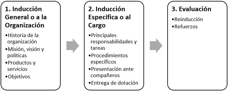 Etapas del proceso de inducción de personal