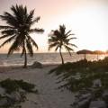 Análisis de la subactividad productiva en Cuba