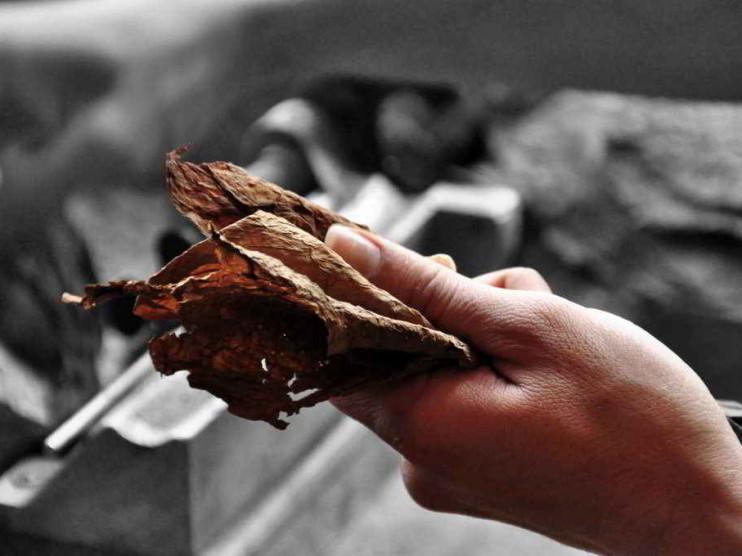 Fundamentación teórica de costos para su aplicación al proceso del beneficio de tabaco