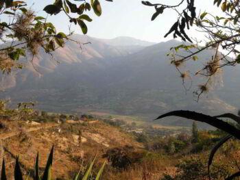 Efectos de la ley de promoción de la inversión en la amazonía peruana en Huánuco