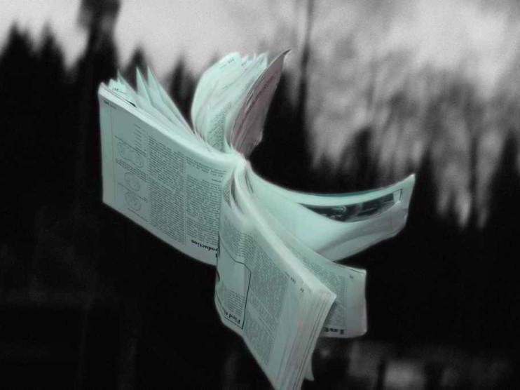 El error de Paul Madving: un aporte de la literatura de ficción al estudio de casos