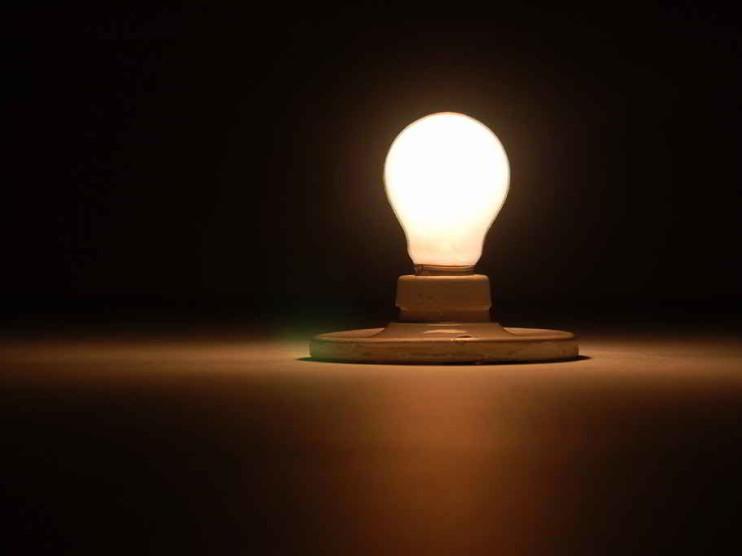 Innovación y organización empresarial
