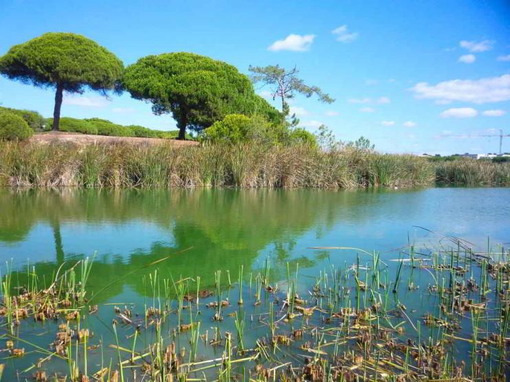Análisis estratégico situacional de una reserva natural