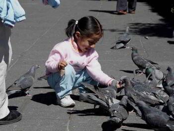 Economía con calidad de vida en el Perú