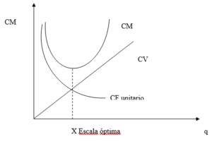 Escala óptima según costo medio