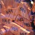 Sistemas ERP para logística en empresas medianas